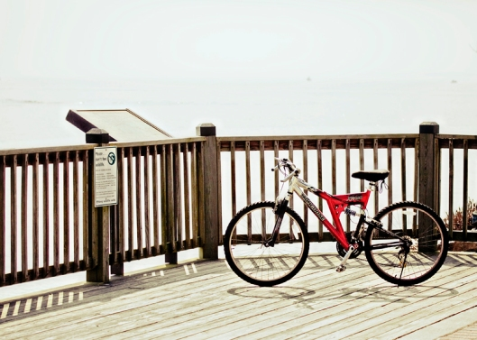 a red bicycle beside the railing of a scenic viewpoint
