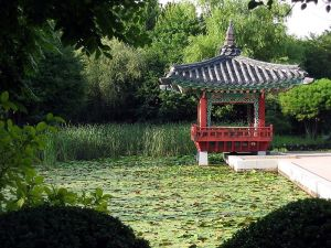 Korean botanical gardens on Jeju Island