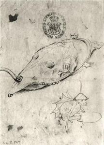 Turtle and a winged demon by Hieronymus Bosch